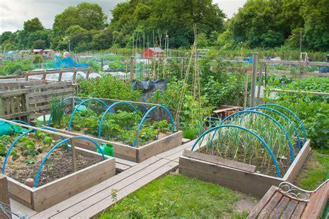 kitchen planner free large backyard vegetable garden home design with diy wood