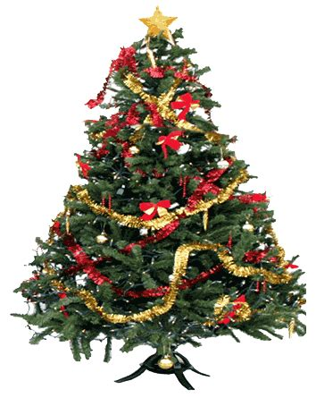 When And Where Did This Christmas Tree Decorating Thing