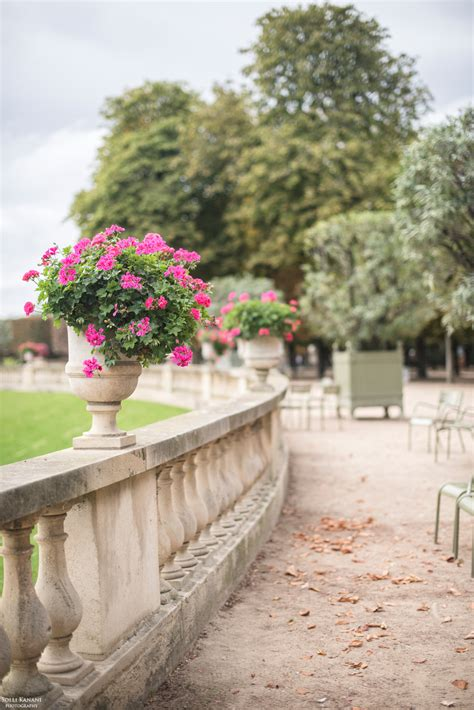 fall is coming to paris blog about paris fashion food