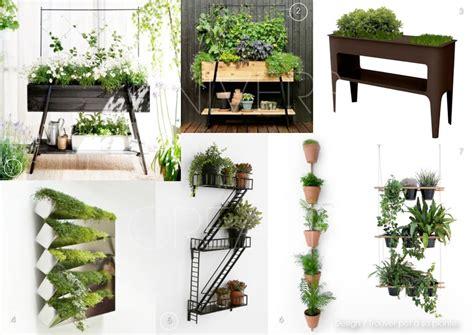 plante cuisine decoration univers creatifs design trouver pot à sa plante