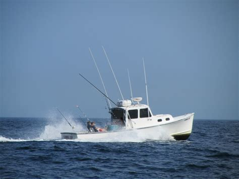 How To Fish For Cod From A Boat by Cape Cod Fishing Boat Striper Charter Fishing Boats Tuna
