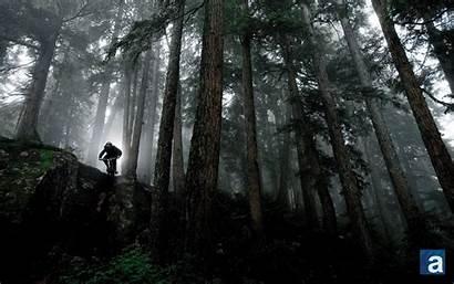 Mountain Bike Downhill Widescreen Samsung