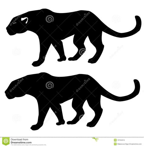 Panther - Silhouette Stock Images - Image: 13153414