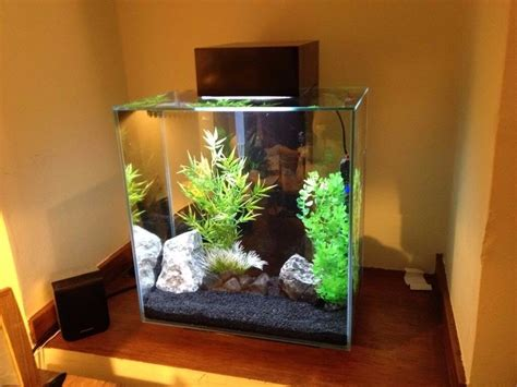Fluval Edge 46l Fish Tank Boxed With Instructions Heater