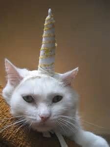 unicorn cat unicorn costume for cats