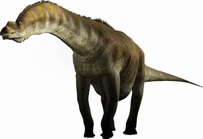 Argentinosaurus Dinosaur Dinosaurs Facts Walking Sauropod Dino