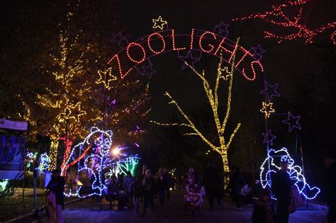 zoo lights washington dc home washington d c