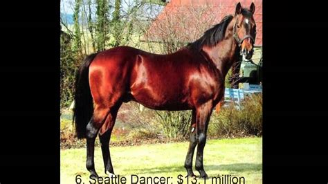 expensive most horses ever sold