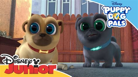 puppy dog pals magical moment bobs favourite