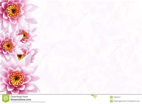 tropical flower background stock image image