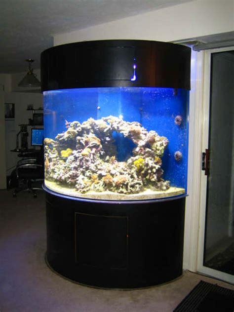 photo gallery  acrylic fish tanks  aquariums