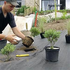 Feutre Géotextile Pour Gravier : feutre weed stop s anti mauvaise herbe bidim accessoires de culture semis ~ Louise-bijoux.com Idées de Décoration