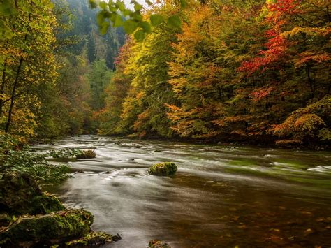 Harz germany autumn river trees-Scenery High Quality ...