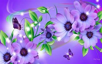 Butterfly Flowers Wallpapers Butterflies Purple Daisies Greepx