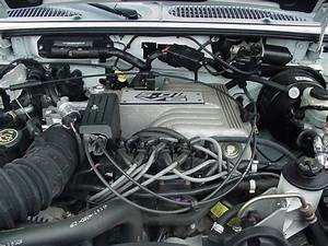 Coal  1998 Ford Explorer Xlt V8  U2013 Rollin U2019 In My 5 0 U2026