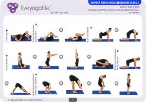 Vinyasa Yoga Poses Beginners