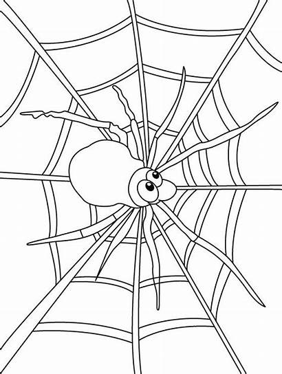 Spider Coloring Web Pages Colouring Spiders Webs