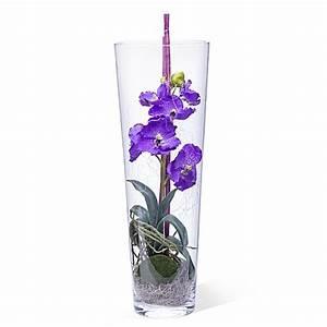 Deko Für Vasen : deko vase orchidee lila 50 cm jetzt bestellen bei valentins ~ Indierocktalk.com Haus und Dekorationen