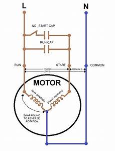 Single Phase Motor Wiring Diagram  Wiring  Electrical
