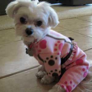 etsy fleece pajamas  small dogs  pink paw print
