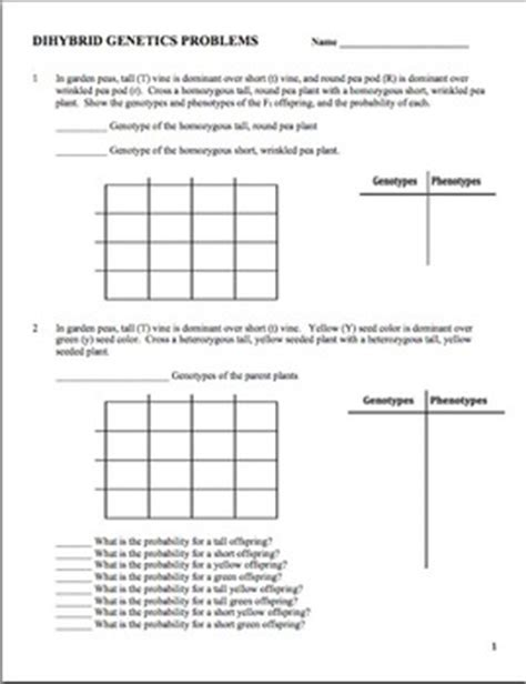Genetics Dihybrid (two Factor) Practice Problem Worksheet Tpt