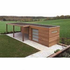Abri De Jardin Monopente : best abri de jardin en bois toit plat photos design ~ Dailycaller-alerts.com Idées de Décoration