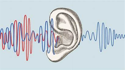 Listening Ears Knees Election Deeper Sore Cycle