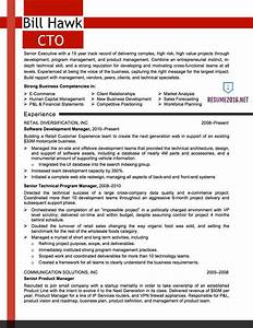 It resume samples 2016 CTO