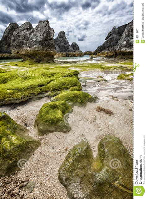 surreal bermuda beach stock photo image