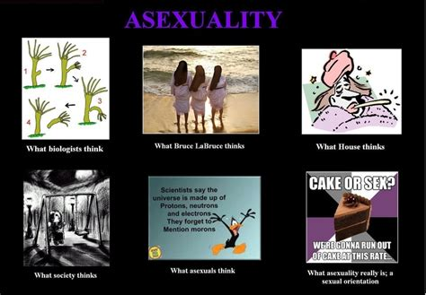 Asexual Memes - asexual meme the asexual life pinterest meme