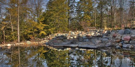 Swimming Pond : 6 Things To Know Before You Install A Residential Swimming
