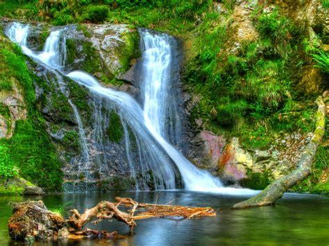 Forest Waterfall Desktop Background 597823 : Wallpapers13.com