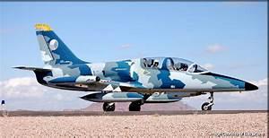Albatros L39