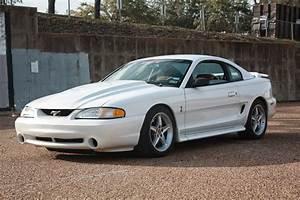 Whiteboy's Mustangs: 1995 mustang cobra (R)