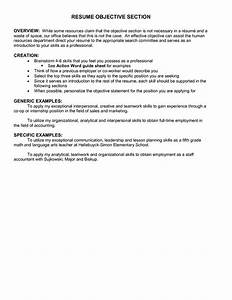 Resume Objectives Best TemplateResume Objective Examples