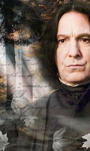 severus-snape-my-eternal-prince   Severus snape, Harry ...