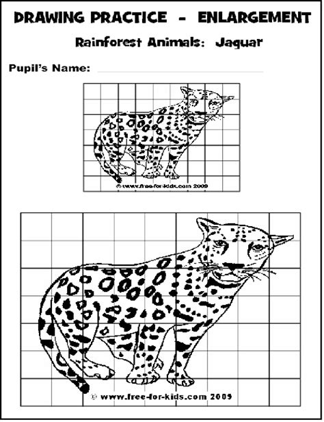 grid drawing examples  pinterest drawings marbles