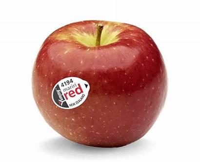 Mariri Apple Nz Apples Yummy Fruit