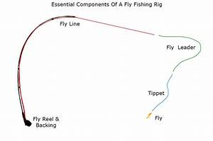 How To Match A Fly Rod  Fly Reel  Fly Line  Leader  And