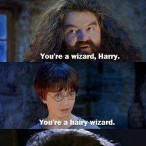 You Re A Wizard Harry Meme - meme center suspense profile
