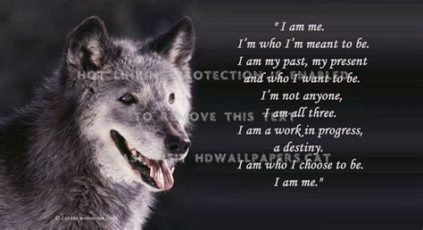 Black Wolf Quotes Wallpaper by White Wolf Quotes Quotesgram