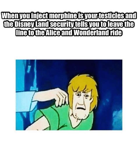 Alice Meme - 25 best memes about alice and wonderland alice and wonderland memes