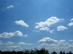 Meandering, Blue, Skies