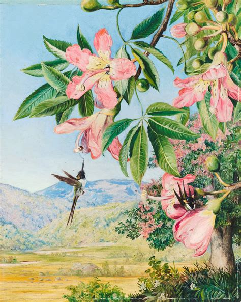 Ksm Cpd Current Art News Marianne North At Kew Gardens