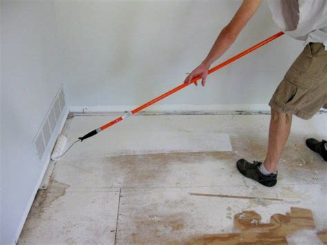 Best Urine Odor And Cat Urine Ideas Can You Get Oil Based Stain Out Of Carpet C J Cleaning Santa Clara Best Product To Rid Dog Urine Smell In Remover Consumer Reports And Rug Melbourne Tapis Richard Ranger Alexandria Maxcare Louisville Ky Chem Dry Sydney Eastern Suburbs