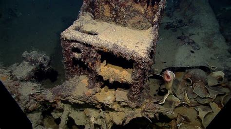 year  shipwreck discovered  gulf  mexico news