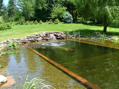 Swimming Pond : Natural Swimming Pool Ideas
