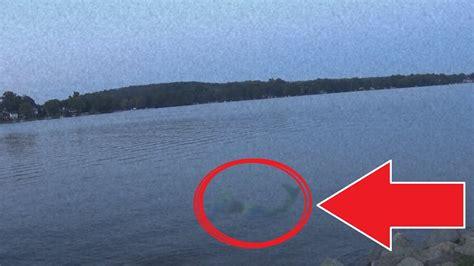 mermaid sighting caught  camera  youtube