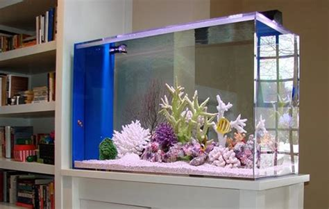decorate  house  fish tank