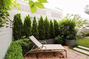 immergrune pflanzen lebedige sichtschutz fur terrasse With katzennetz balkon mit weitech garden protector